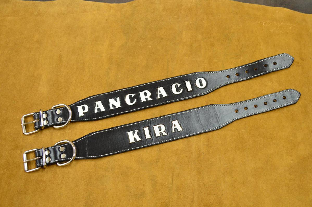 collar de perro cuero personalizable nombre